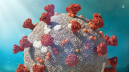 Covid-19 Coronavirus response